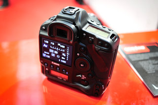 canon eos 1d x pictures and hands on image 4