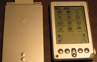 a brief history of palm image 3