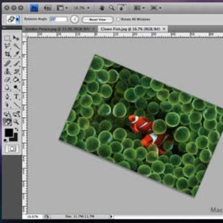 Adobe releases Photoshop 11.0.1 update