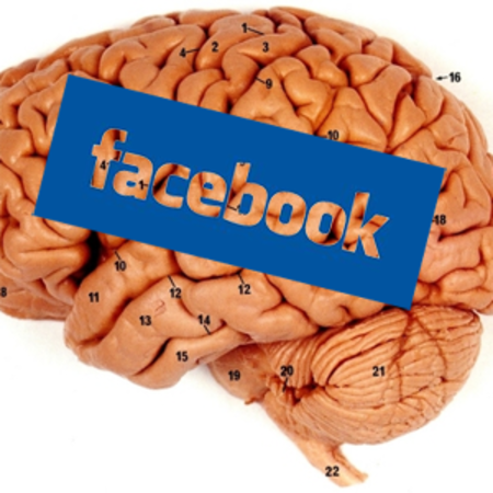 "Human brains ""can't handle"" Facebook"