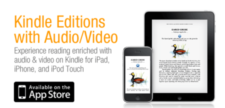 Amazon Kindle app gets audio and video makeover