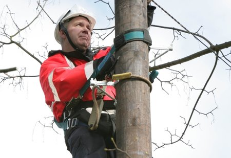 Virgin Media: Superfast broadband...from your electricity pole