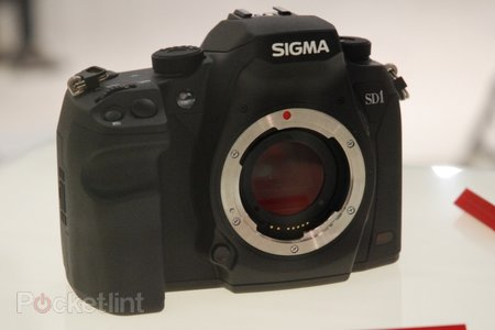 Sigma SD1 eyes on
