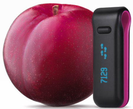 Fitbit Ultra coming to shift the Christmas pud
