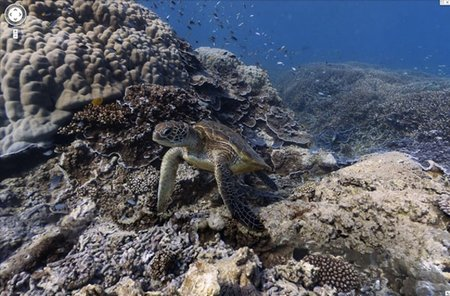 Google Street View becomes...Ocean View with underwater maps of the sea - photo 1