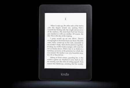 Amazon: We make no profit from Kindles, only services
