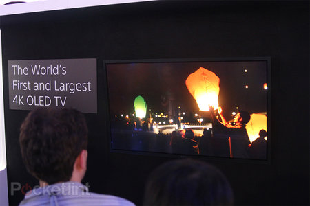 Sony 56-inch 4K OLED prototype TV demoed, we go eyes-on - photo 3