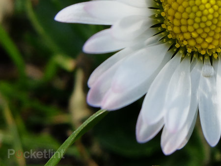 Fujifilm X20: The first sample images - photo 3