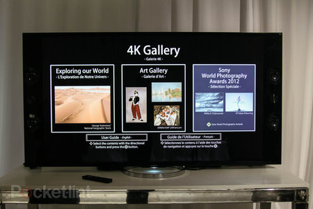 Sony Bravia X9 TV owners treated to 4K photo galleries from Nat. Geo - photo 1