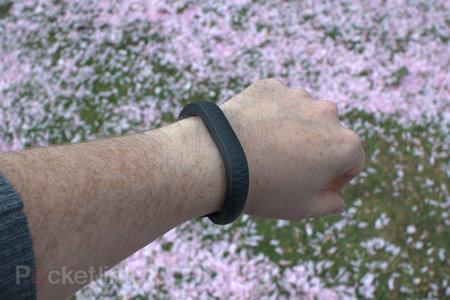Jawbone Up (2013) review - photo 1