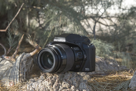 Hands-on: Olympus Stylus SP-100EE review