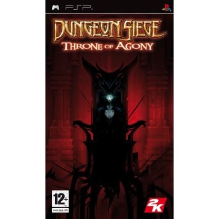 Dungeon Siege Throne of Agony - PSP review