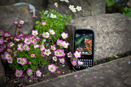 Palm Pixi Plus review - photo 2