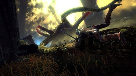 The Witcher 2: Assassins of Kings - photo 7