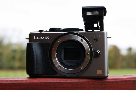 Panasonic Lumix GX1  - photo 5