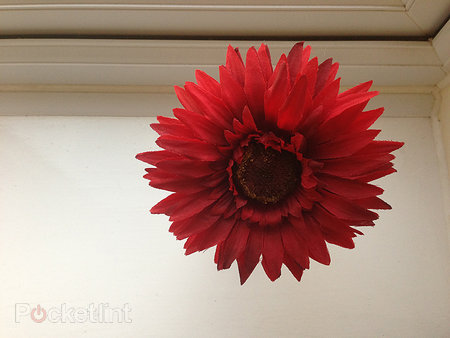 iPhone 5 camera review - photo 7