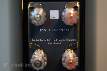 Dali Epicon 2 bookshelf speakers - photo 13