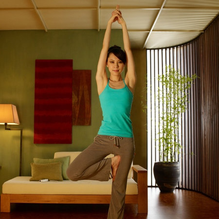 New yoga game planned for Wii