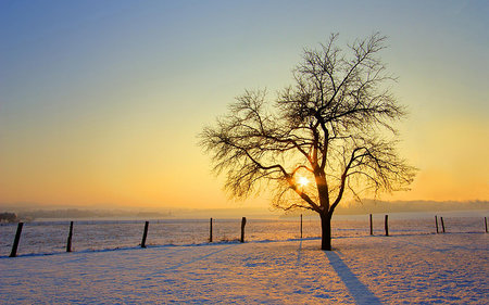 Snow photos: Five top tips for great shots in the snow - photo 3