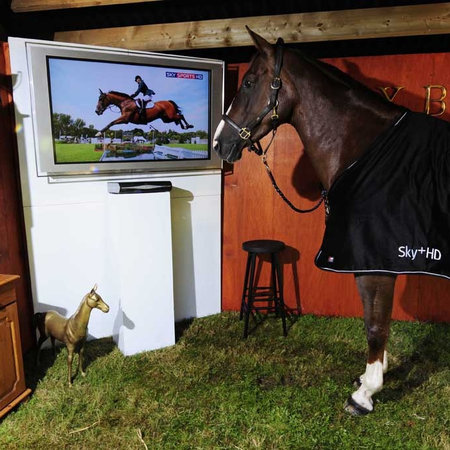 Sky stunt sees horse hooked up with 52-inch HDTV