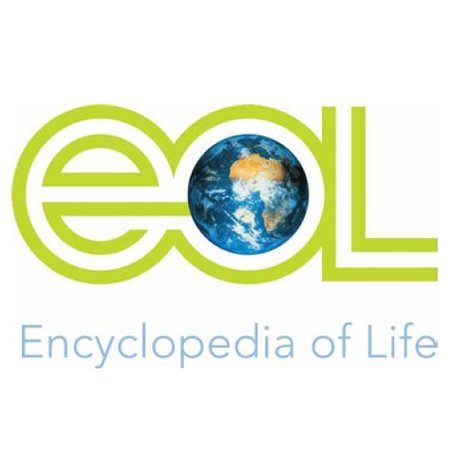 Online Encyclopedia of Life hits 150,000 species