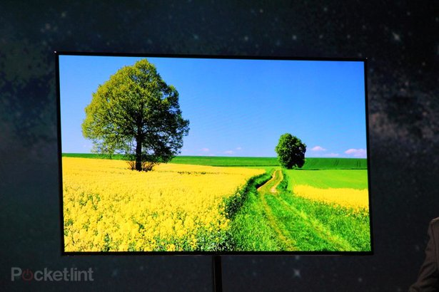 http://cdn.pocket-lint.com/images/DC14/samsung-55-inch-super-oled-tv-coming-2012-4.jpg?20120109-233649