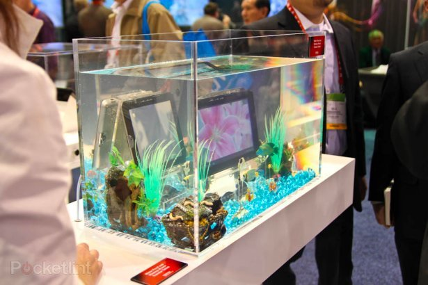 Toshiba waterproof tablet with wireless power concept demoed at CES. Tablets, Toshiba, CES2012 0