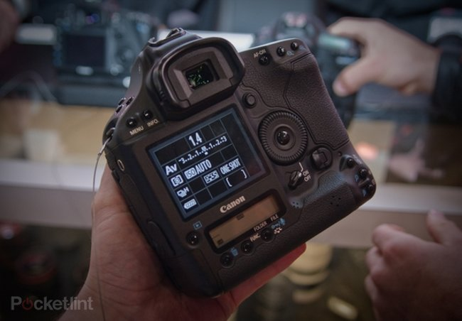 Shoot like a pro - what camera do you need? - photo 1