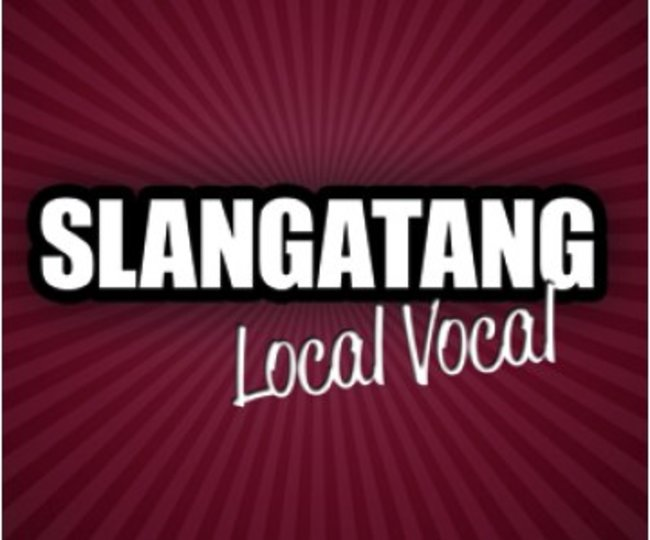 APP OF THE DAY: Slangatang review (Android / Nokia / BlackBerry) - photo 1
