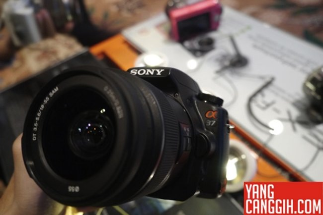 Sony a37 and NEX-F3 camera specs leaked - photo 1