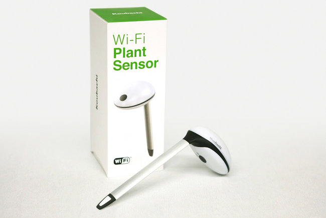 Koubachi Wi-Fi Plant Sensor hits UK in time for Chelsea Flower Show - photo 4