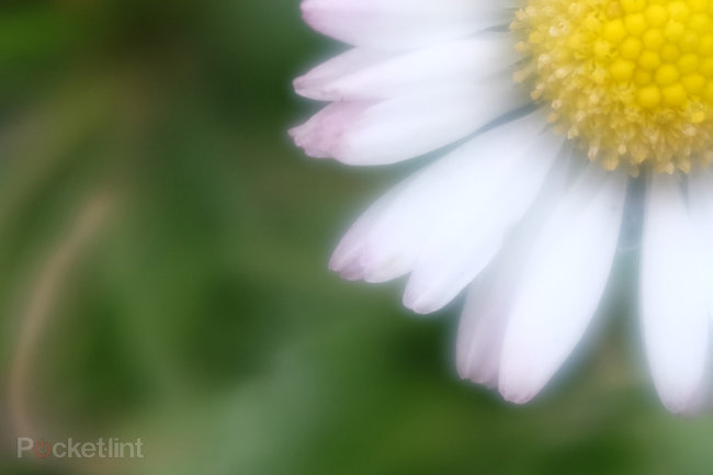 Fujifilm X100S: Macro mode soft, avoid wide apertures - photo 3