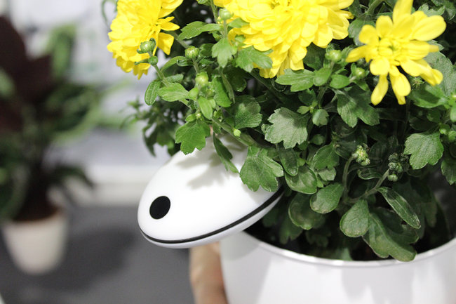 Koubachi Wi-Fi Plant Sensor Pro knows more than its predecessor and we've seen how - photo 1