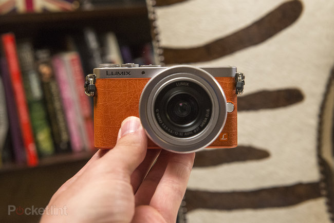 Hands-on: Panasonic Lumix GM1 review - photo 2