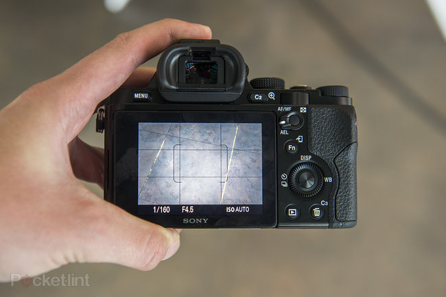 Sony Alpha A7 review - photo 41