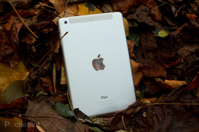 iPad mini with Retina display review - photo 3