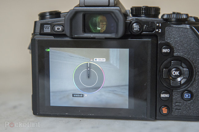 Olympus OM-D E-M1 review - photo 8