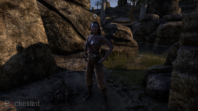 Elder Scrolls Online preview: First lengthy play of massively multiplayer Skyrim - photo 15