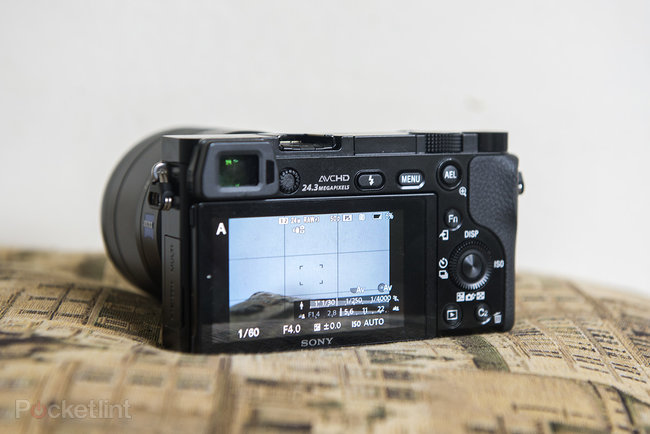 Sony Alpha A6000 review - photo 8