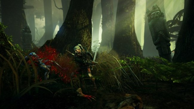 The Witcher 2: Assassins of Kings - photo 8