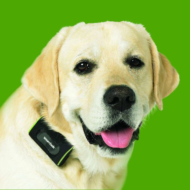 Zoombak pet and car tracking AGPS devices launch - photo 1