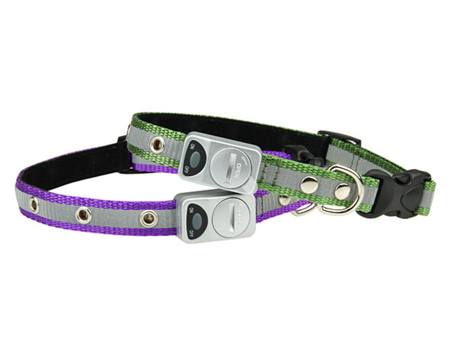 Flashing LED dog collar on sale  - photo 3