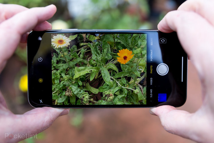 11 photography tips and tricks for better smartphone photos