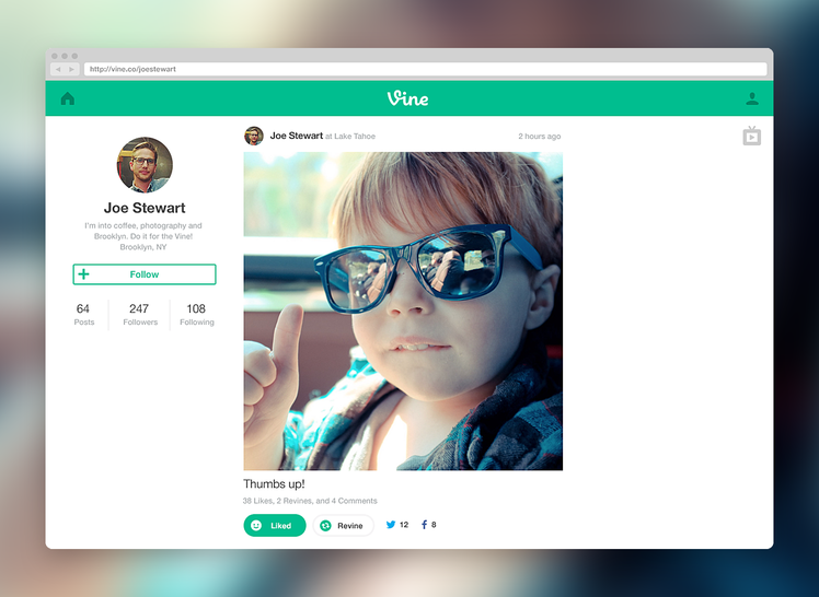 Vine's website and profiles