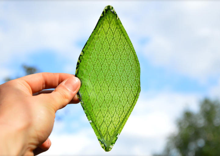 Mad-made leaf could make space