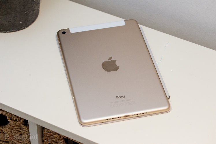 You can't see this iPad mini 5 leak but it shows a minor update