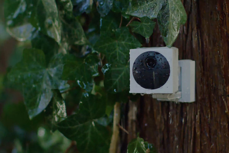 Wyze launches its first wire-free outdoor camera for an ultra-low $50