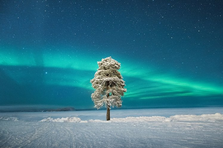Stunning photos from the Astronomy Photographer of the Year awards