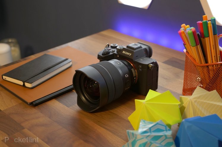 Sony Alpha A7S III review: The low-light video champ