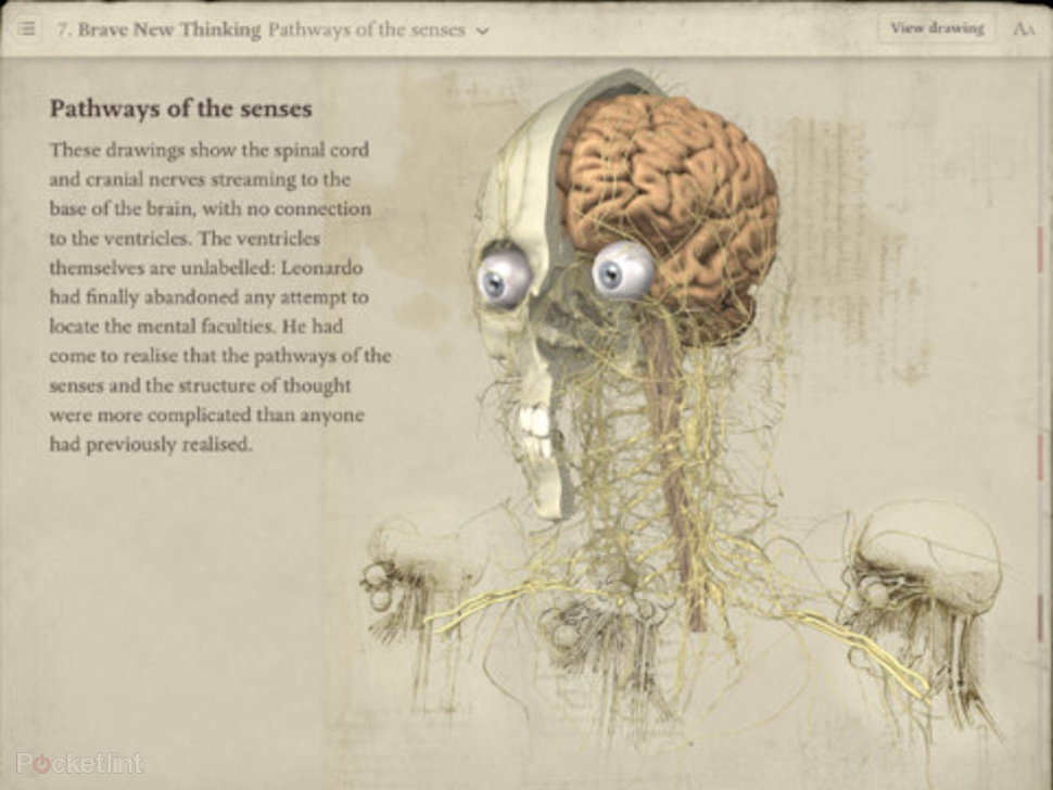 APP OF THE DAY: Leonardo Da Vinci Anatomy review (iPad) - Pocket-lint